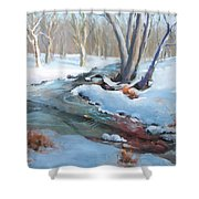 Whippany Brook In Winter Shower Curtain