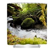 Whiskey Bend Trail  Shower Curtain