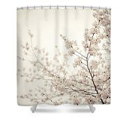 Whisper - Spring Blossoms - Central Park Shower Curtain