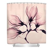 Whisper Magnolia Shower Curtain