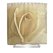 Whisper Of A Soft Yellow Rose Flower Shower Curtain