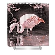 Whisper Pink Flamingo Shower Curtain
