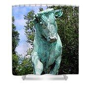 Whisper The Bull Shower Curtain