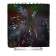 Whispered Dreams Shower Curtain