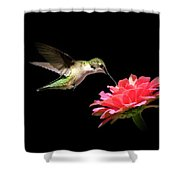 Whispering Hummingbird Shower Curtain