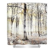 Whispering Woodland In Autumn Fall Shower Curtain