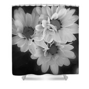Whispers Of Beauty Shower Curtain