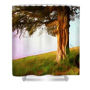 Whispers Of The Wind Shower Curtain