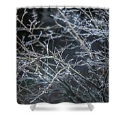 Whispers Of Winter Shower Curtain