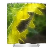 Whispy Petals Shower Curtain