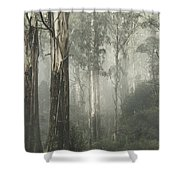 Whist Shower Curtain