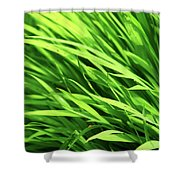 Whistle The Grass Shower Curtain