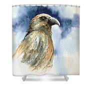 Whistler Shower Curtain