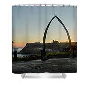 Whitby Whalebone Golden Hour Shower Curtain