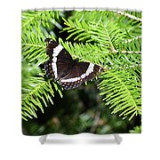White Admiral On Tree Shower Curtain