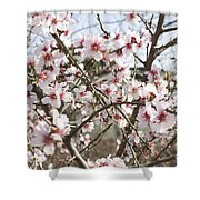 White Almond Flowers Shower Curtain