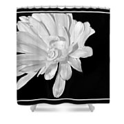 White And Black Flower Painting Shower Curtain