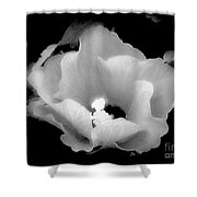 White And Black Hibiscus Flower Shower Curtain