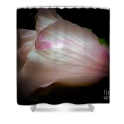 White And Pink Rose Of Sharon Shower Curtain