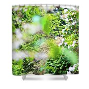 White And Pink Spring Shower Curtain
