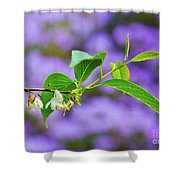 White And Purple Spring 2 Shower Curtain
