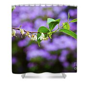 White And Purple Spring Shower Curtain