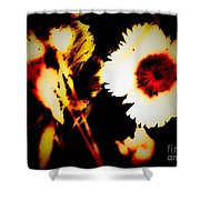 White And Red Dianthus Shower Curtain