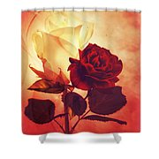 White And Red Roses Shower Curtain