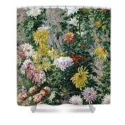 White And Yellow Chrysanthemums Shower Curtain by Gustave Caillebotte