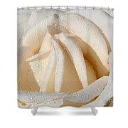 White Angel Rose Shower Curtain