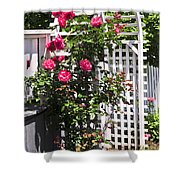 White Arbor In A Garden Shower Curtain by Elena Elisseeva