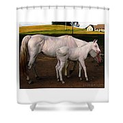 White Baby Horse Shower Curtain