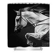 White Beautiful Horse B And W Shower Curtain