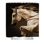 White Beautiful Horse  Shower Curtain