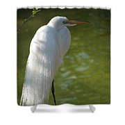 White Beauty Of The Marsh Shower Curtain
