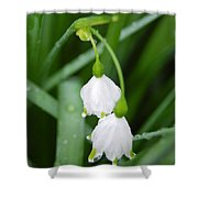 White Bells Perspective Shower Curtain
