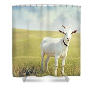 White Billy Goat Shower Curtain