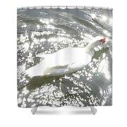 White Bird On Sparkly Water Shower Curtain