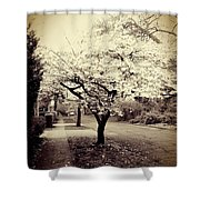 White Bloomers Shower Curtain