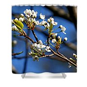 White Blooms Shower Curtain