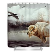 White Buffalo And Raven Shower Curtain