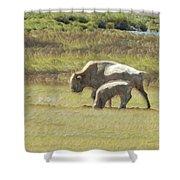 White Buffalo Shower Curtain