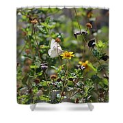 White Butterfly On Golden Daisy Shower Curtain
