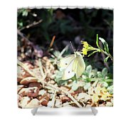 White Butterfly On Goldenseal Shower Curtain
