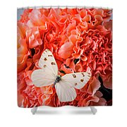 White Butterfly On Pink Carnations Shower Curtain