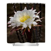 White Cactus Fower Shower Curtain