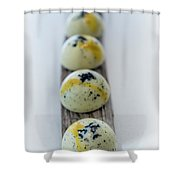 White Chocolate With Black Sesame Shower Curtain