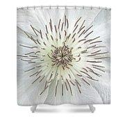 White Clematis Flower Garden 50121b Shower Curtain