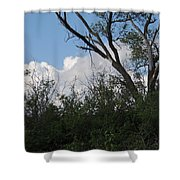 White Clouds With Trees Shower Curtain