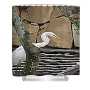 White Crane On Roof Shower Curtain